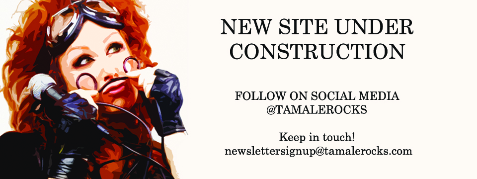 TamaleNewSiteSlide2